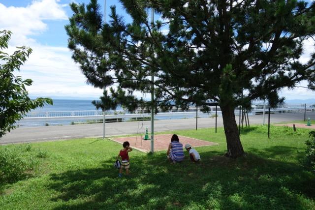国営明石海峡公園バーベキュー広場の松の木の下で過ごす家族
