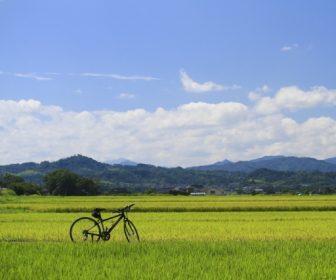 淡路島でサイクリング